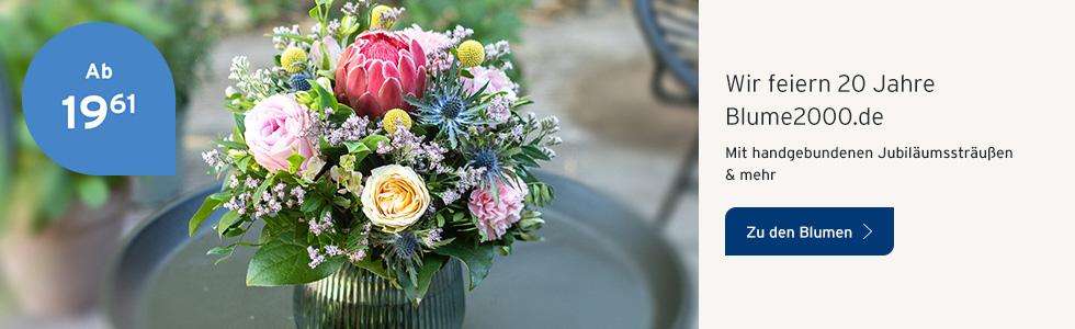 Wir feiern 20 Jahre Blume2000.de