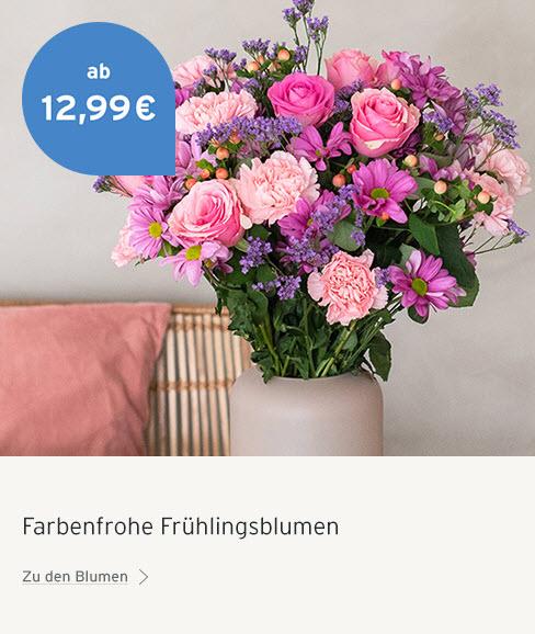 Frühlinsblumen