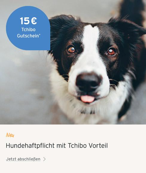 Hunde_Haftpflichtversicherung Frau Bett