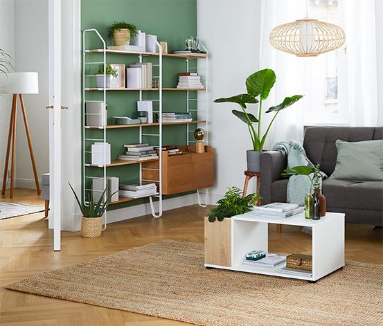 Konferenční stolek s přihrádkou na rostliny