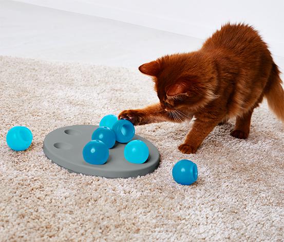 Mavi Kedi Zeka Oyuncağı