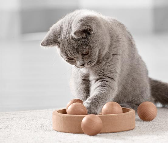 Inteligentna zabawka dla kota