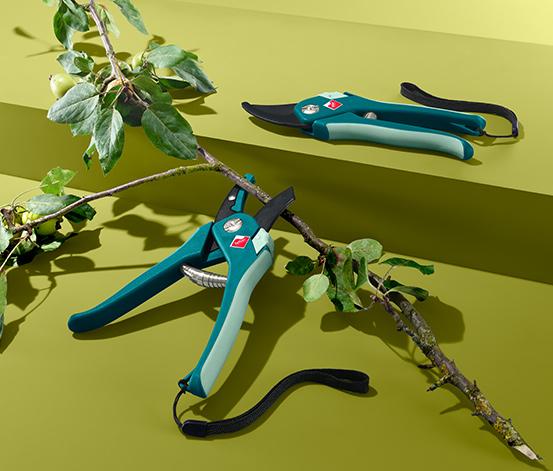 Ast- und Blumenschere
