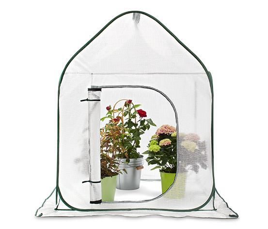 Växthustält med pop up-funktion, stort