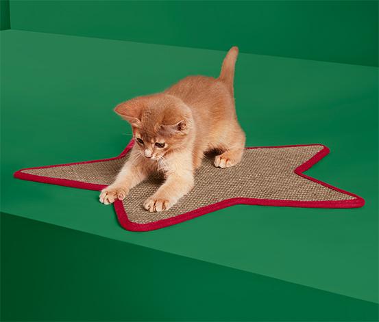 Škrabací koberec pro kočky
