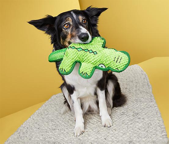 Plüss kutyajáték, krokodil