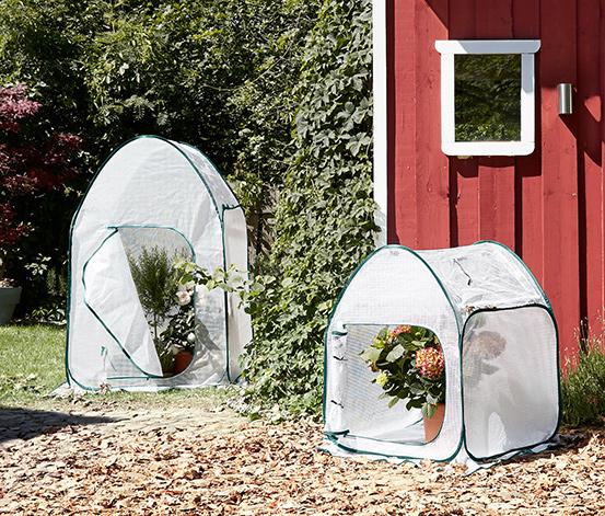Tchibo Pflanzenschutz-Zelt, Pop-up
