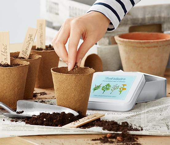 Súprava na pestovanie »Čajové bylinky«