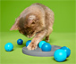 Jouet d'intelligence pour chat