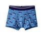 3 fiú boxer alsónadrág szettben, cápa, kék