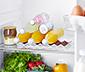 Buzdolabı Şişe Tutucusu