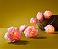 Guirlande lumineuse à LED, fleurs