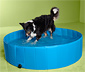 Köpek Havuzu, yaklaşık 120 cm