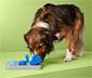Hunde-Intelligenzspielzeug
