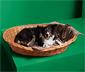 Skladacia mäkká deka pre zvieratá