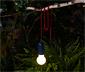 Kıskaçlı LED Lamba