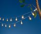 Guirlande lumineuse à LED « Mini-ampoules »