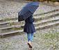 Lacivert Desenli Şemsiye