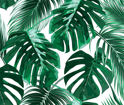 Designwalls-Fototapete »Palm Leaves«